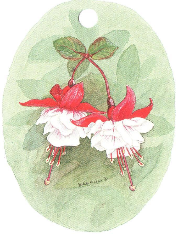Strung Gift Tag Fuchsia