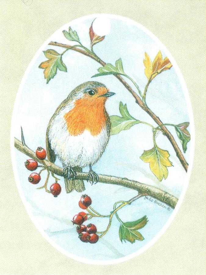 Strung Gift Tag Robin