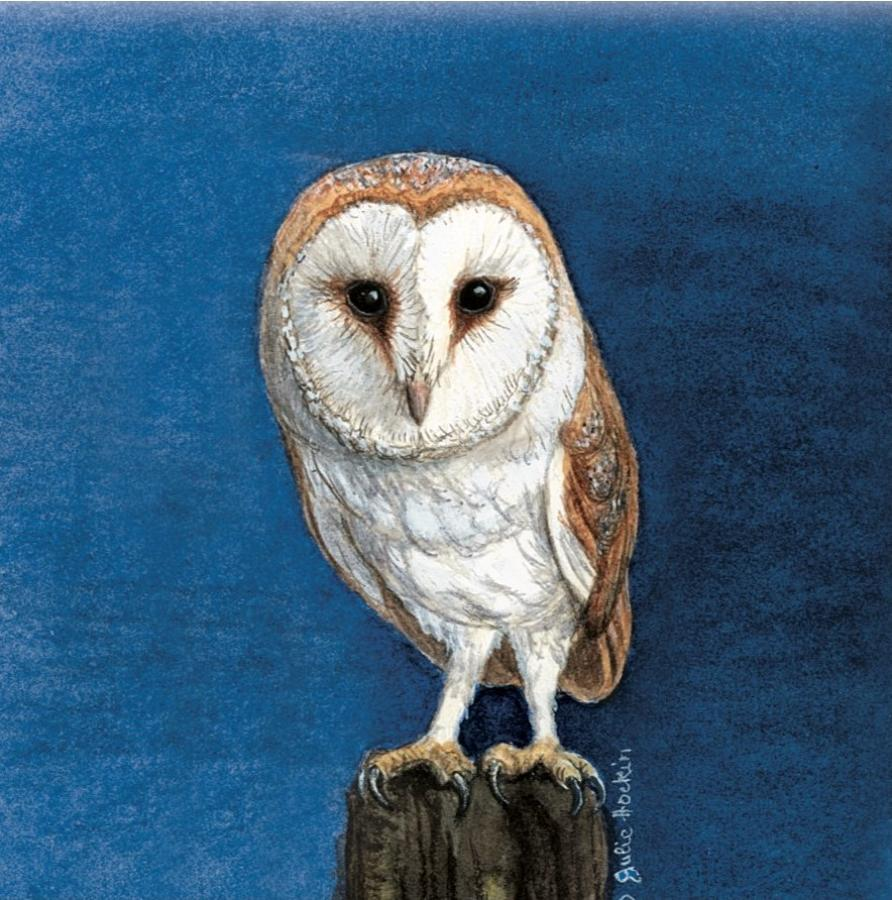 Ceramic Pot Stand  Barn Owl