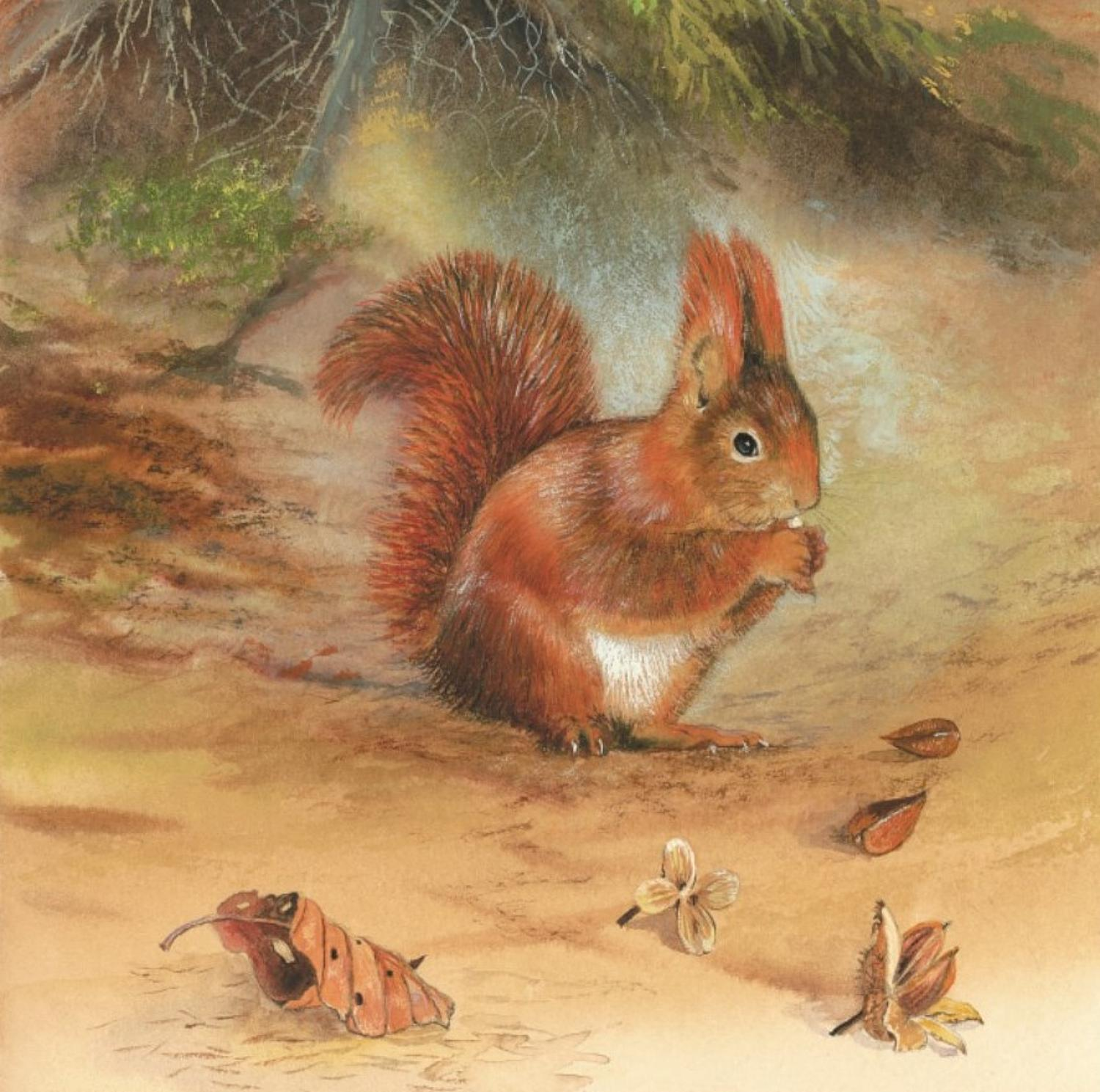 Ceramic Pot Stand  Red Squirrel
