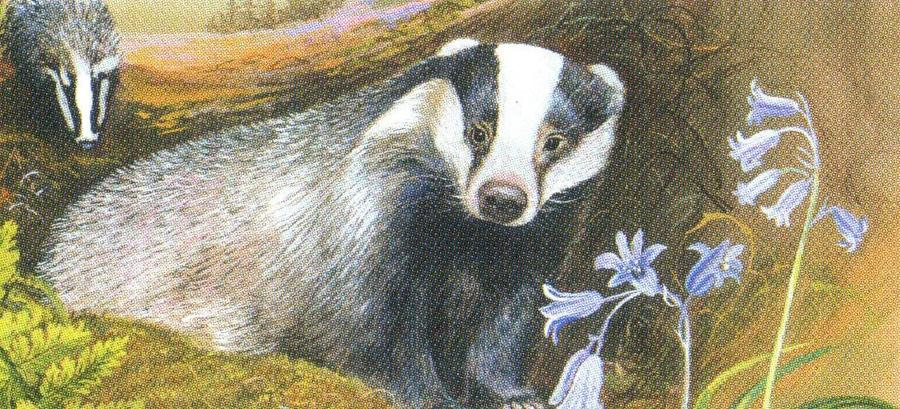 Letter Opener - Badgers at Night