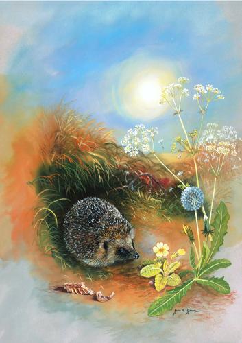 Glass Work Top Saver - Hedgehog & Dandelion