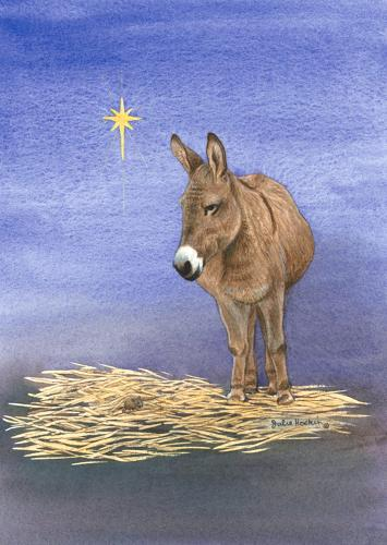 Glass Work Top Saver - Donkey