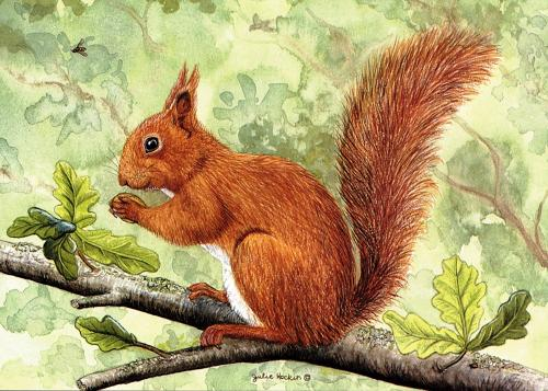 Glass Work Top Saver - Red Squirrel
