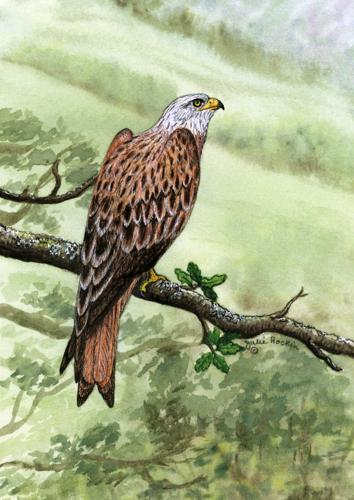 Glass Work Top Saver - Red Kite