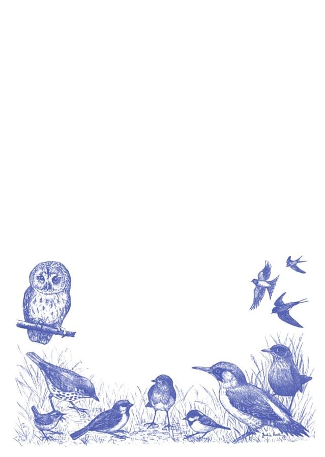 A5 Notepad - Garden Birds