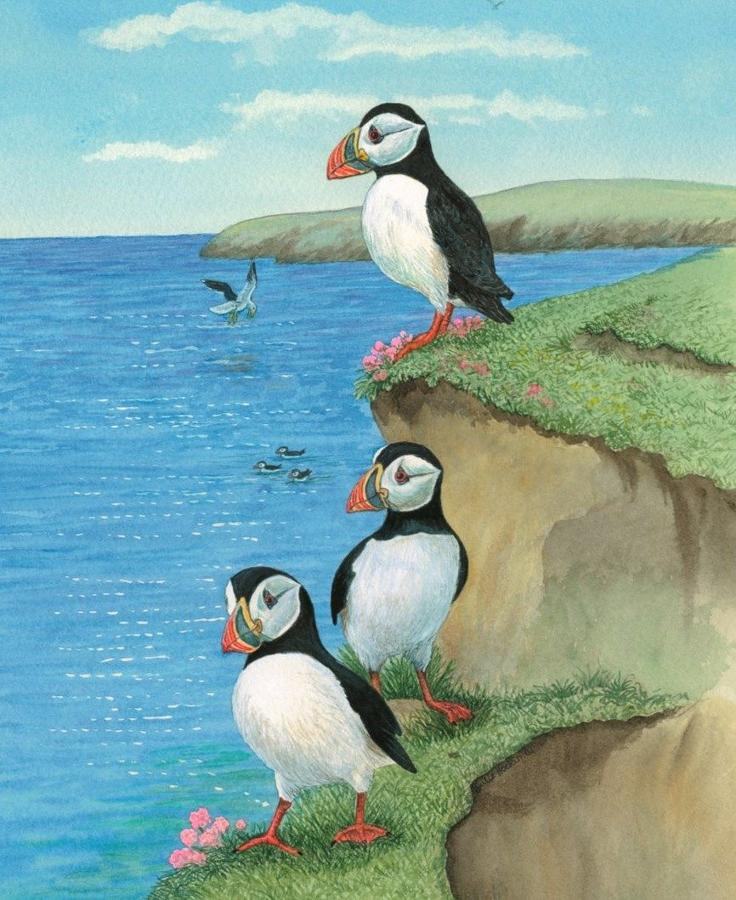 Glasses Cleaning Cloth - Puffins