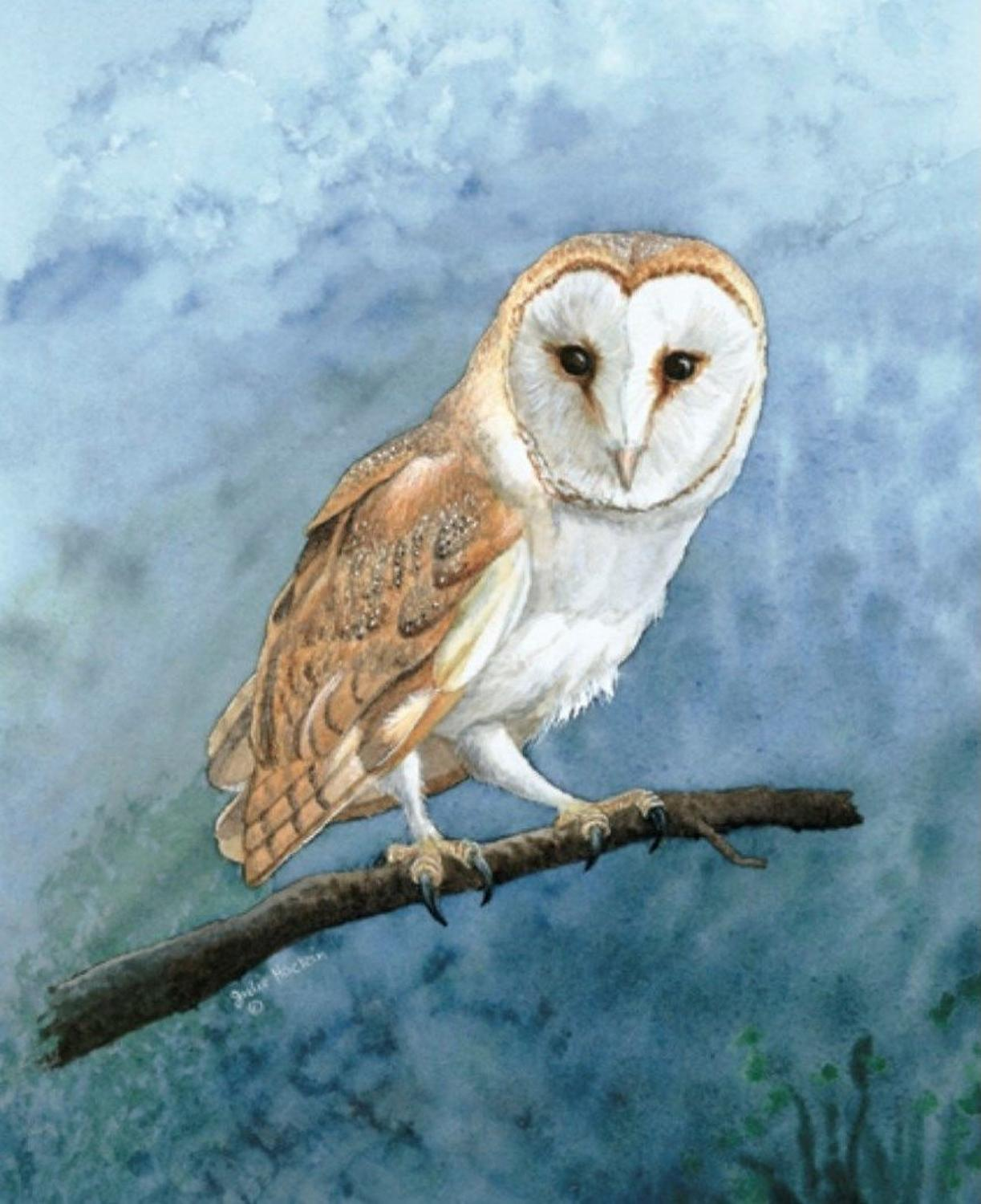 Glasses Cleaning Cloth - Barn Owl