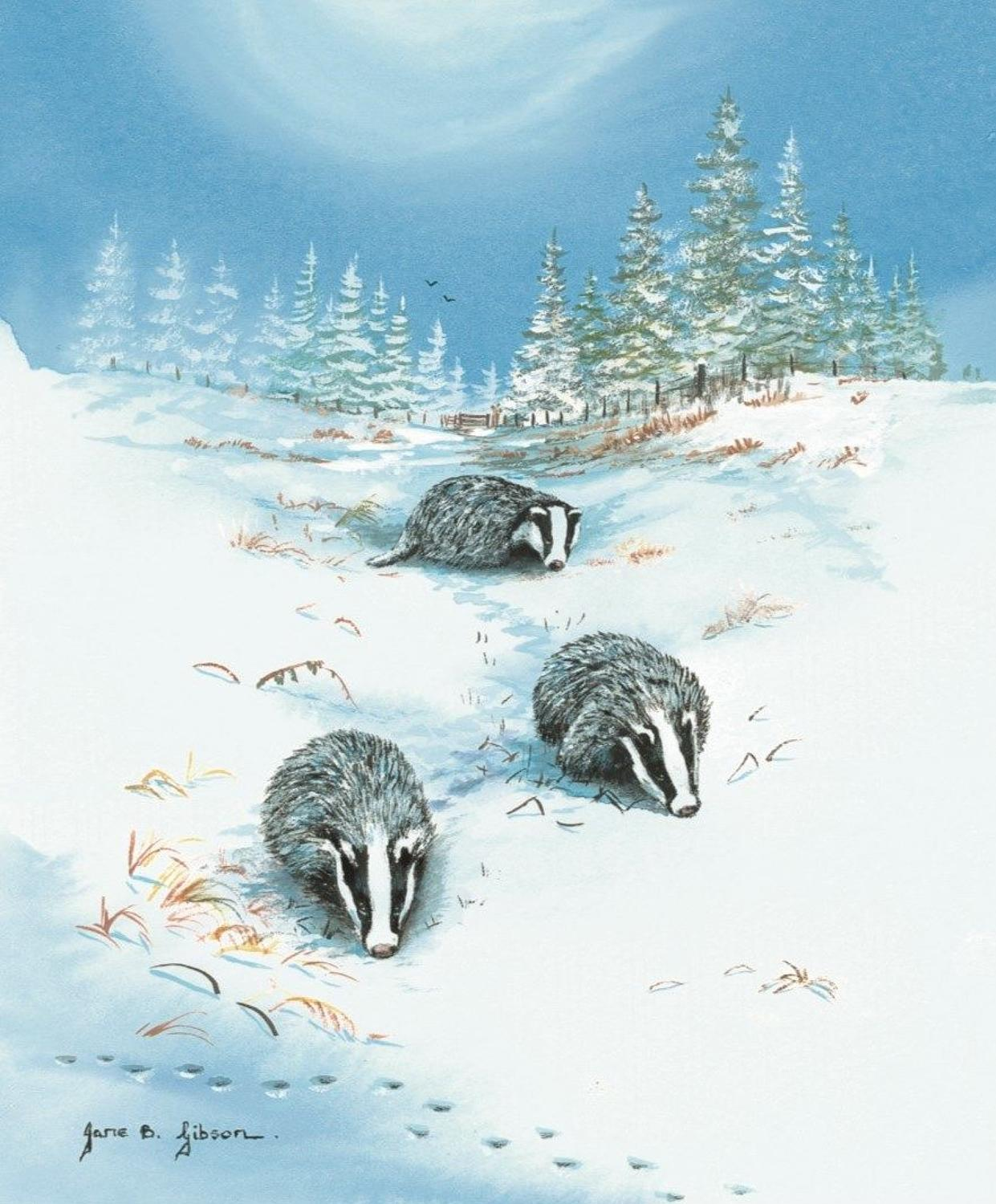 Glasses Cleaning Cloth - Badgers in the Snow