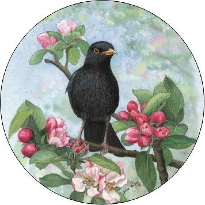 Pill Box - Blackbird