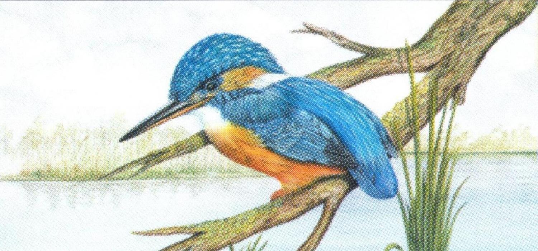 Magnetic Letter Opener - Kingfisher
