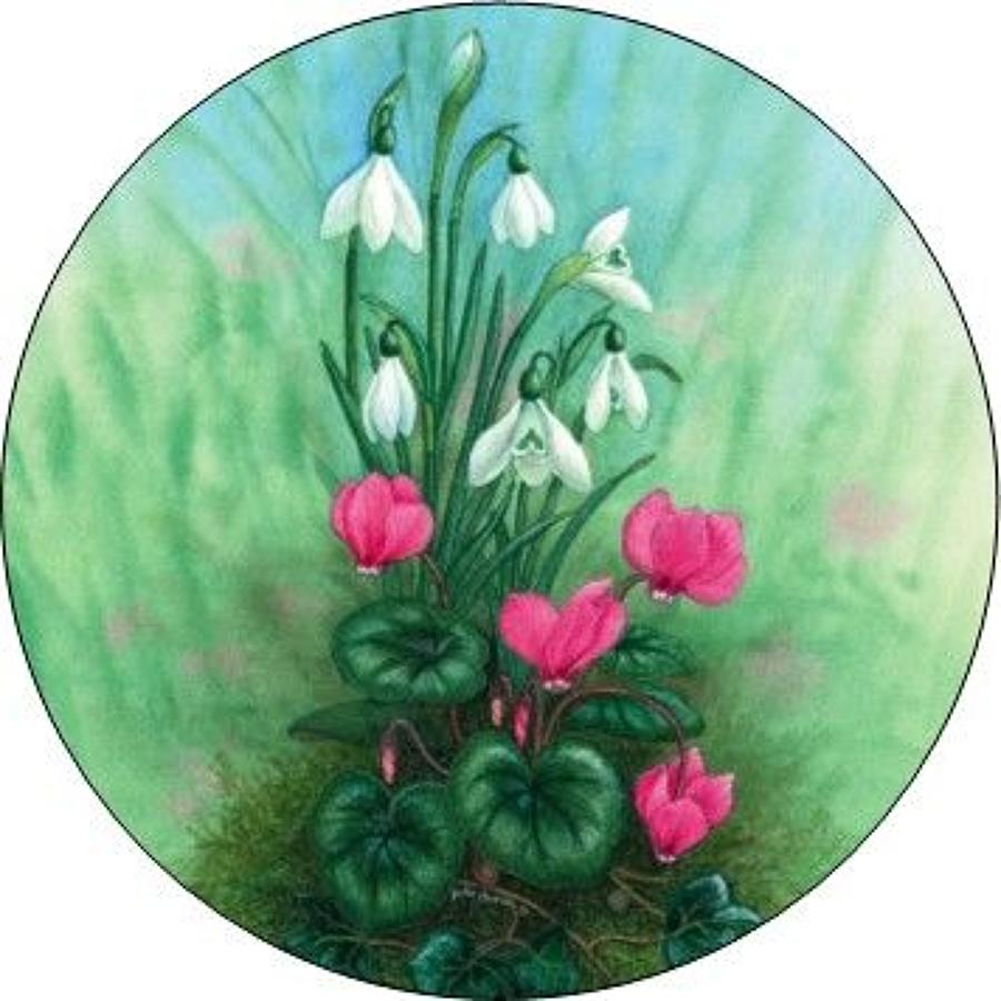 Compact Pocket Mirror - Cyclamen & Snowdrop