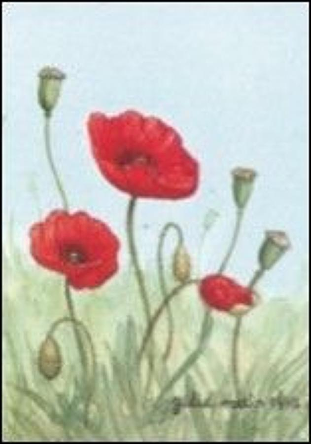 Pen - Poppies