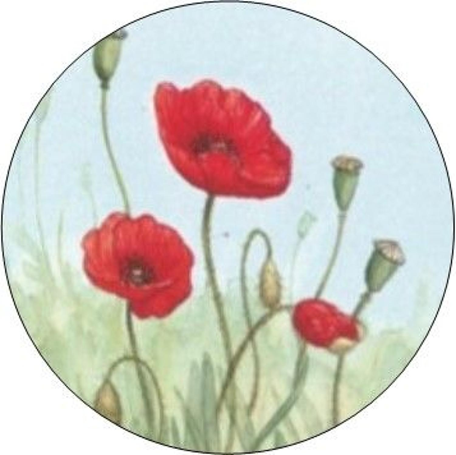 Compact Pocket Mirror - Poppy
