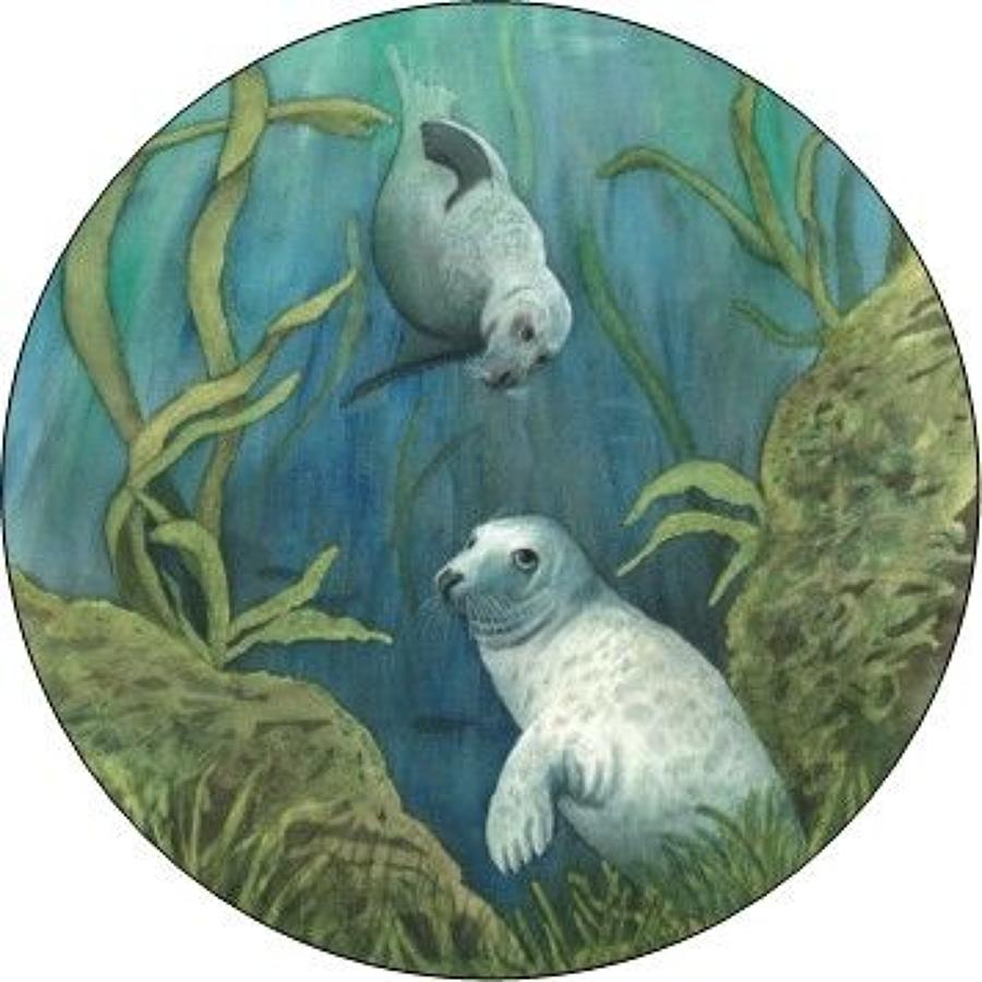 Compact Pocket Mirror - Grey Seals