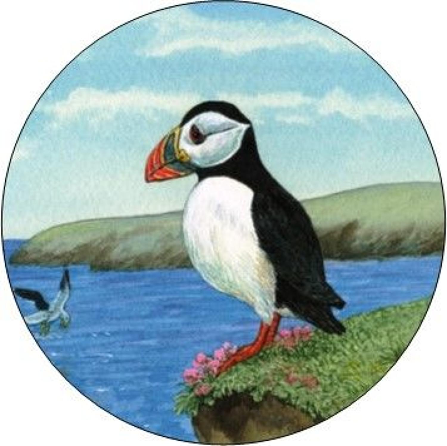 Compact Pocket Mirror - Puffin