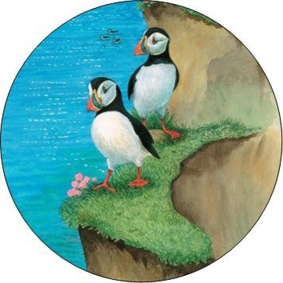 Compact Pocket Mirror - Puffins