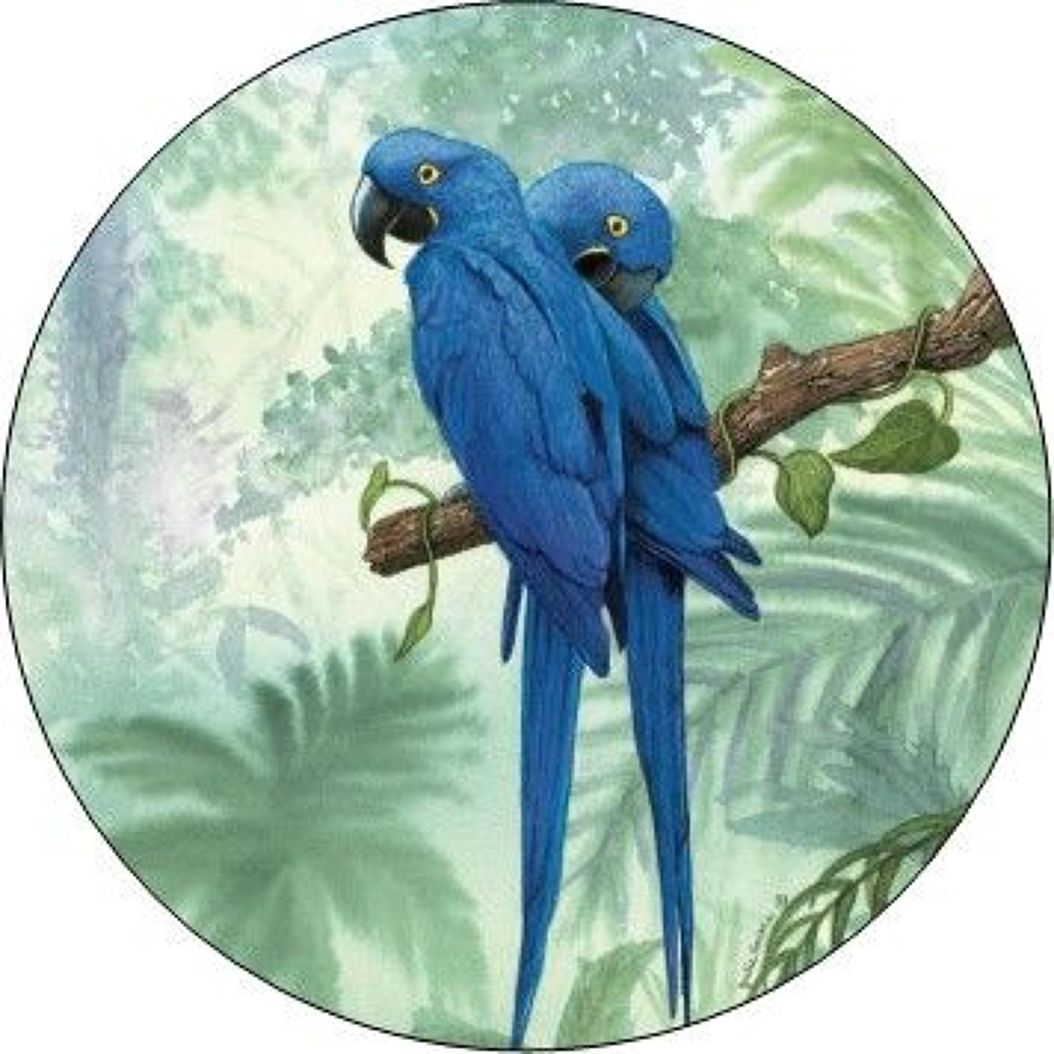 Compact Pocket Mirror - Hyacinth Macaw