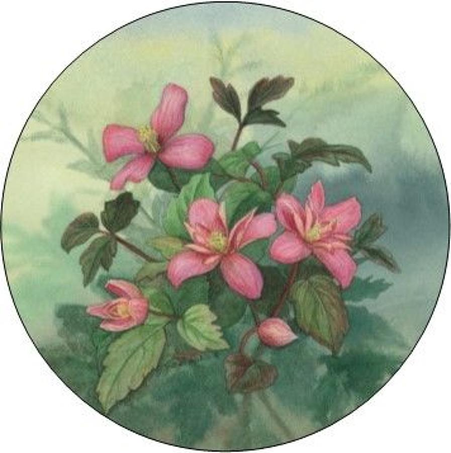 Compact Pocket Mirror - Clematis