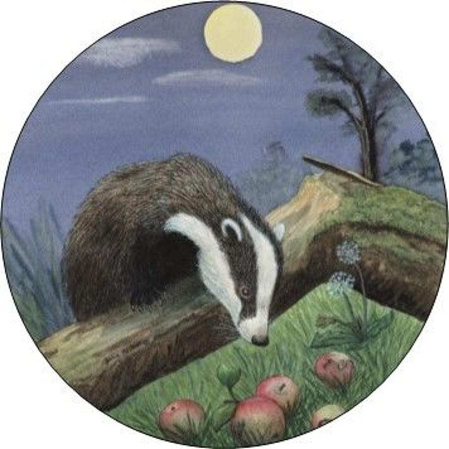 Compact Pocket Mirror - Badger