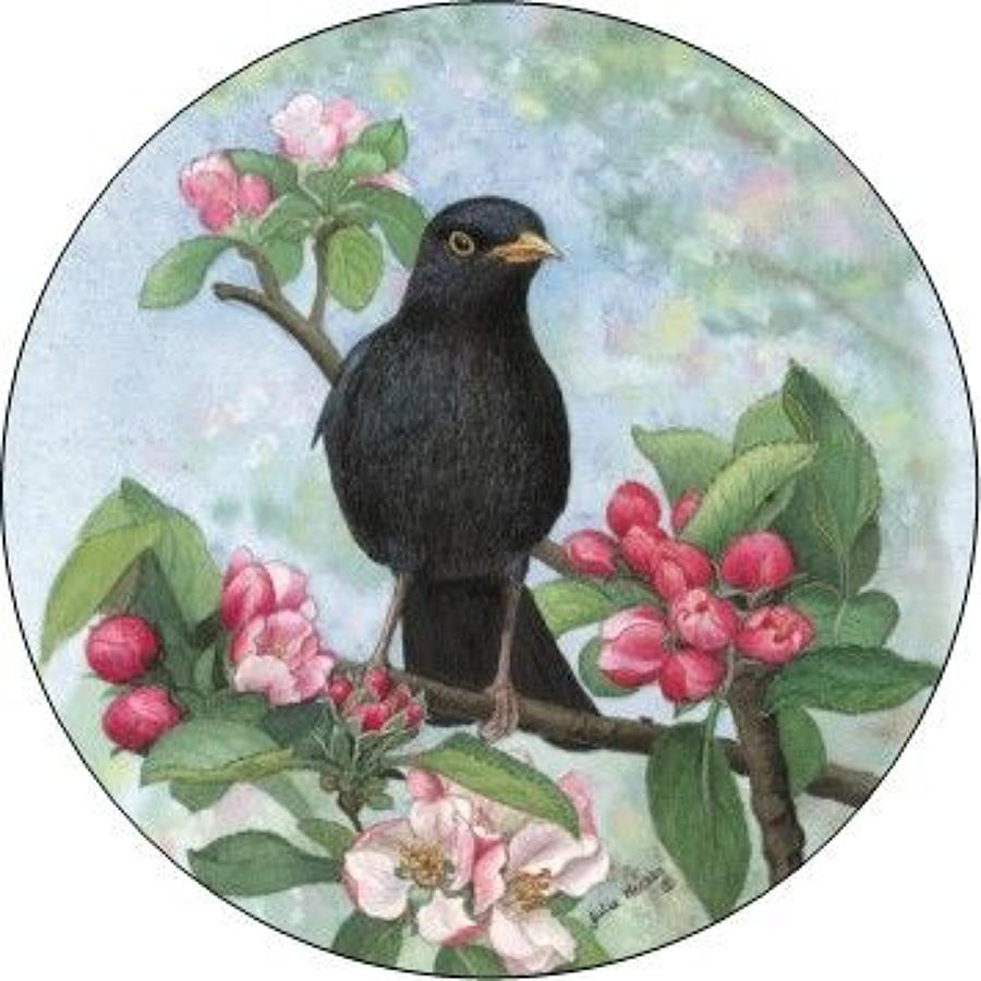 Compact Pocket Mirror - Blackbird