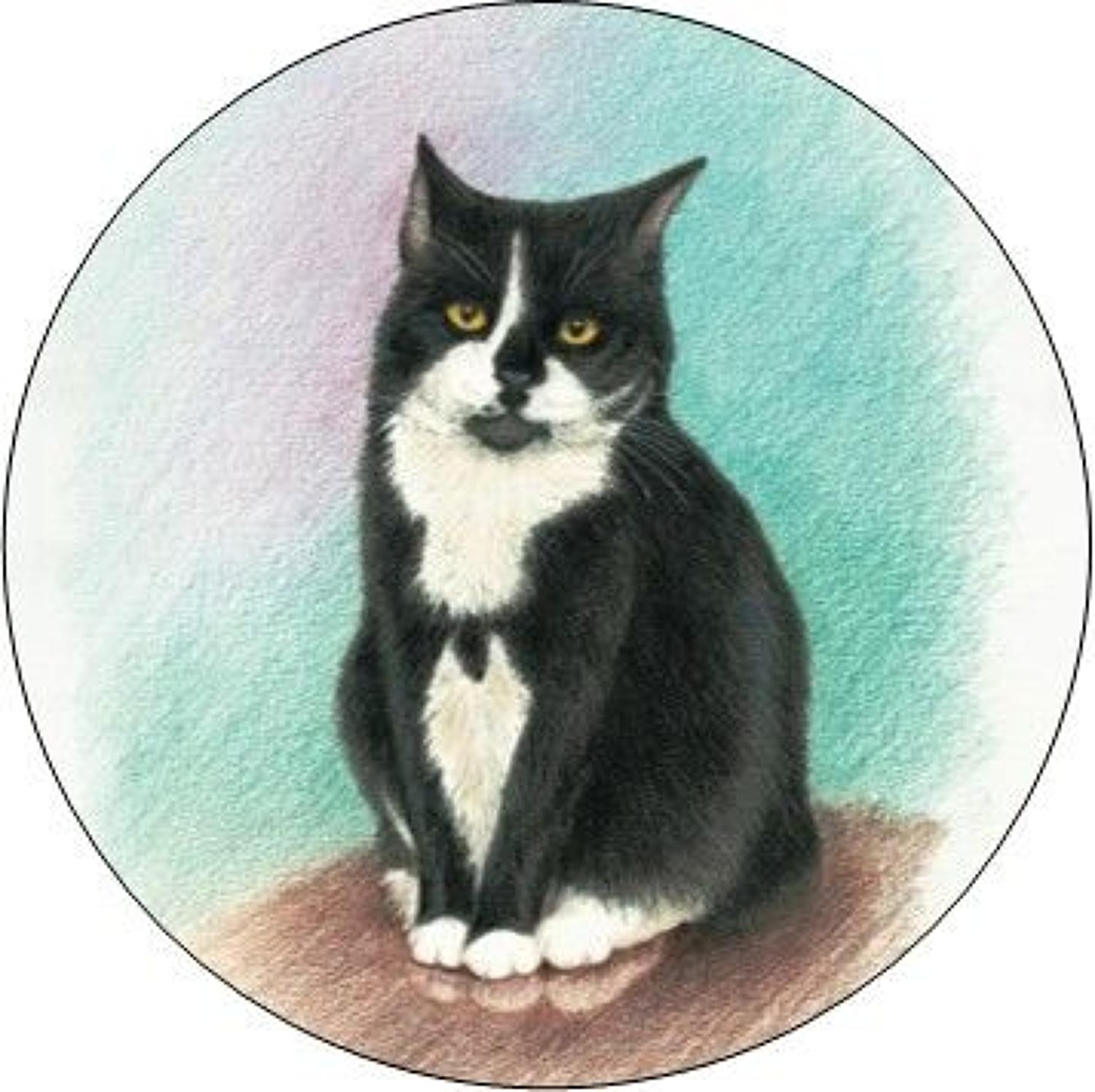 Compact Pocket Mirror - Black & White Cat