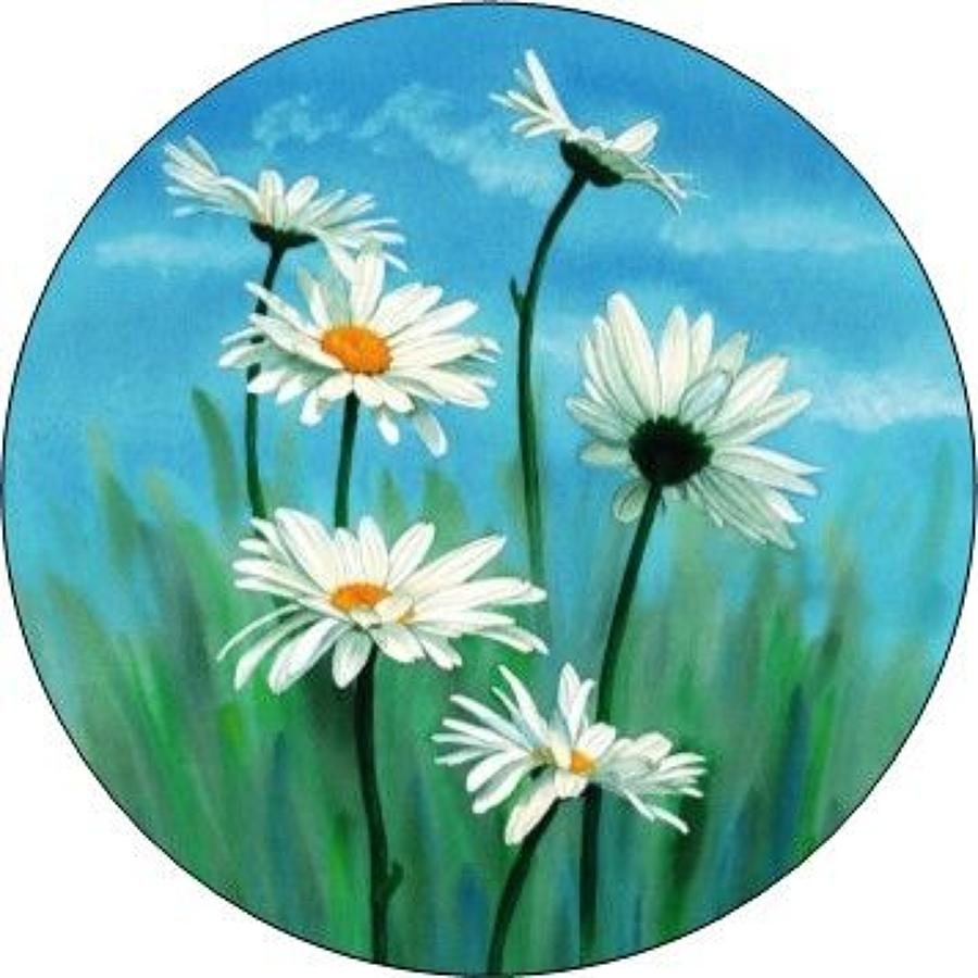 Compact Pocket Mirror - Daisy