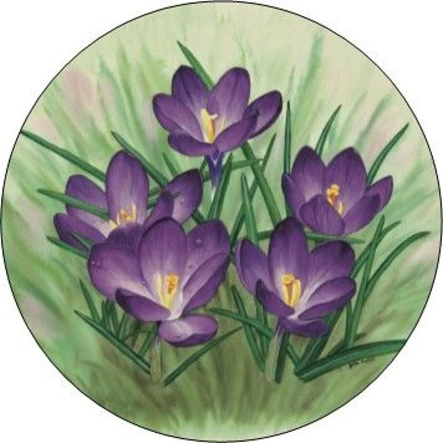 Compact Pocket Mirror - Crocus