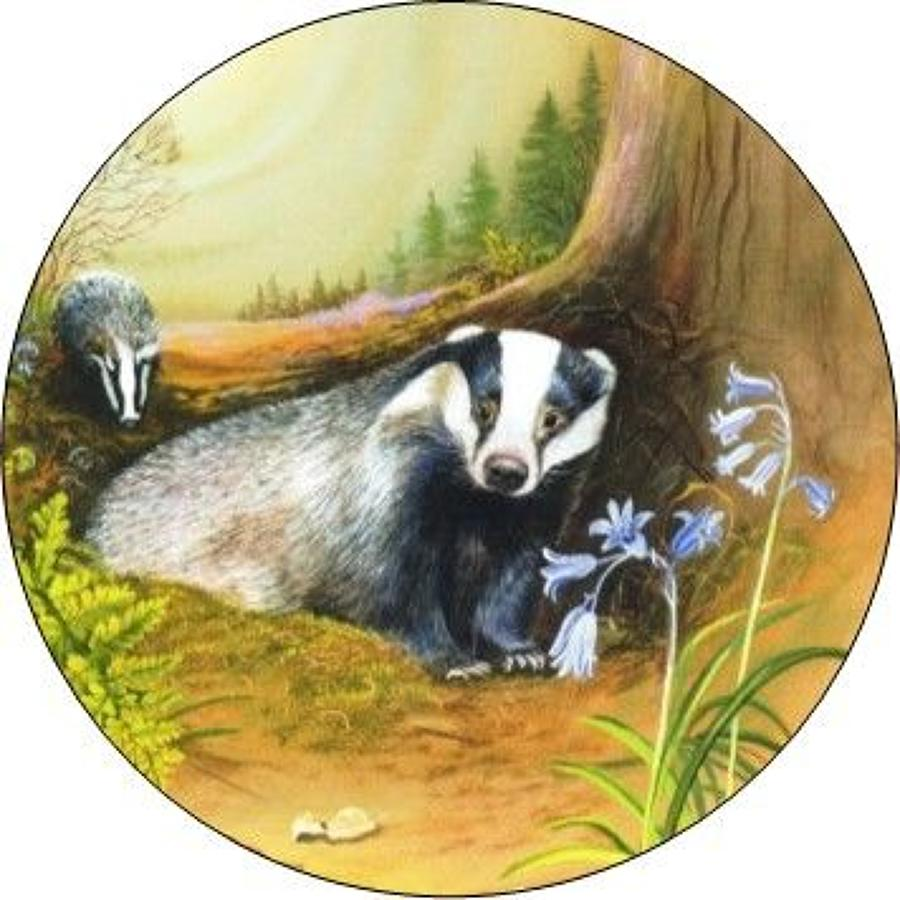 Compact Pocket Mirror - Badgers at Night