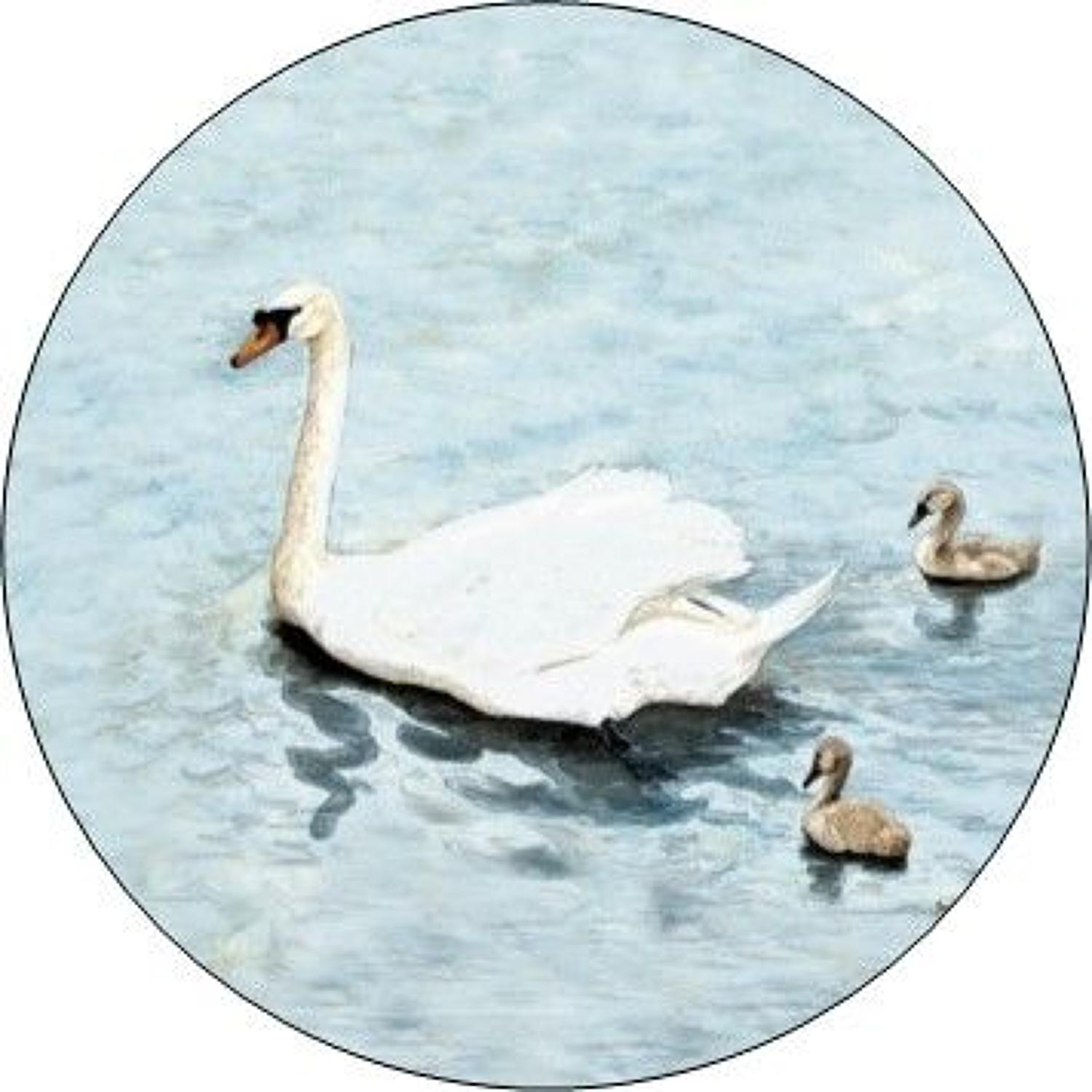 Compact Pocket Mirror - Swans