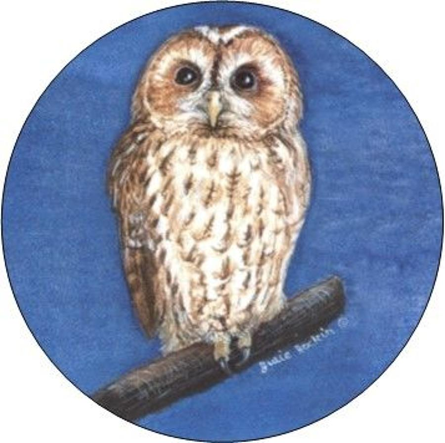 Compact Pocket Mirror - Tawny Owl