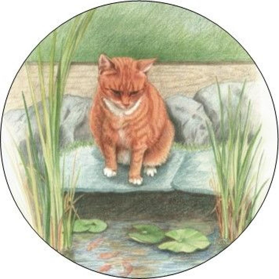 Compact Pocket Mirror - Ginger Cat