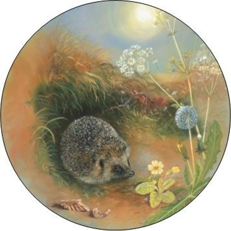 Compact Pocket Mirror - Hedgehog & Dandelion