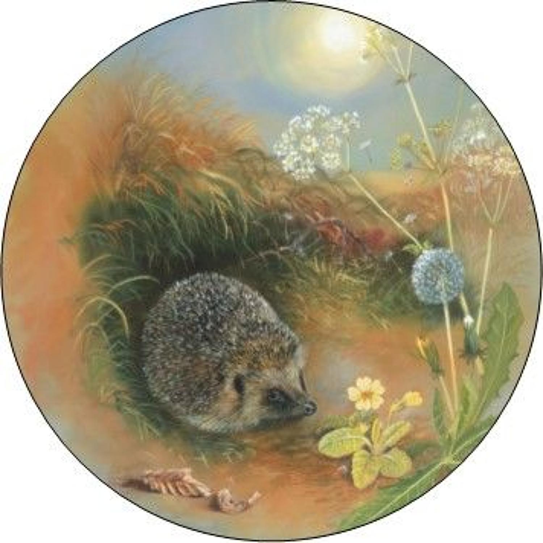 Compact Pocket Mirror - Hedgehog & Dandelion