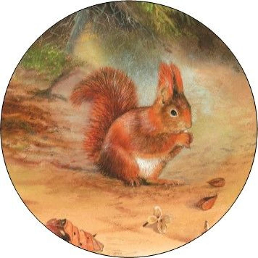 Compact Pocket Mirror - Red Squirrel