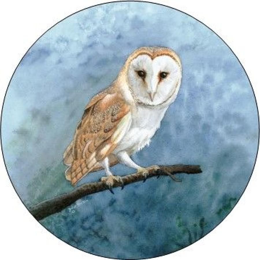 Compact Pocket Mirror - Barn Owl