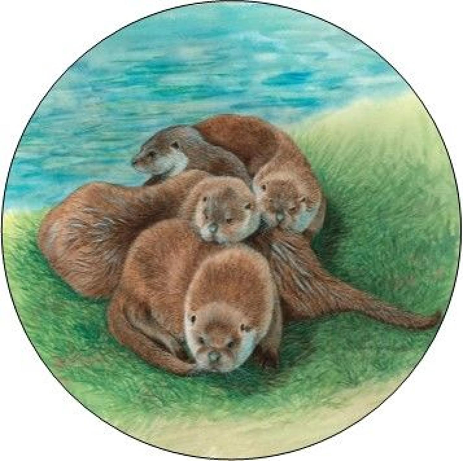 Compact Pocket Mirror - Tangle of Otters