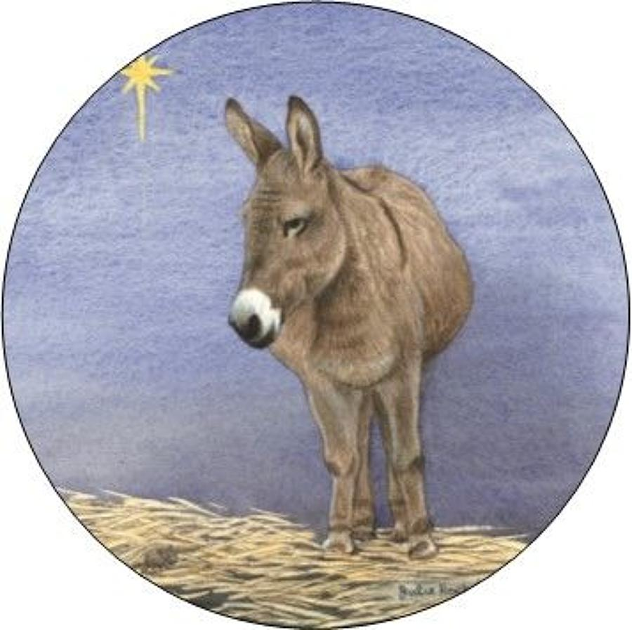 Compact Pocket Mirror - Donkey