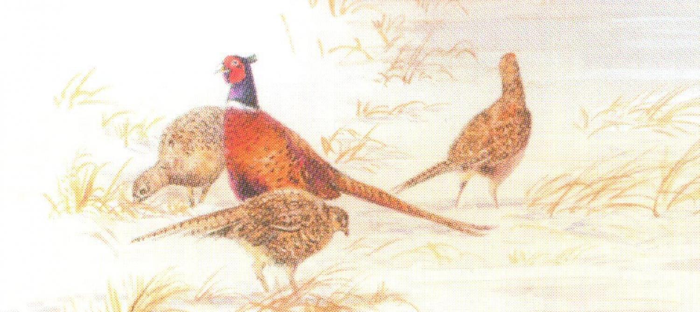 Magnetic Letter Opener - Pheasants