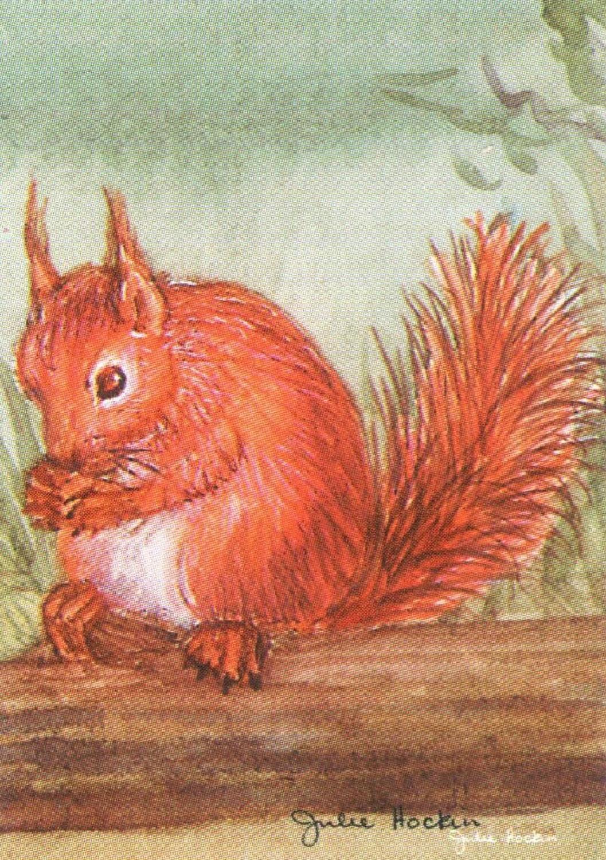 Bottle Opener Keyring - Red Squirrel