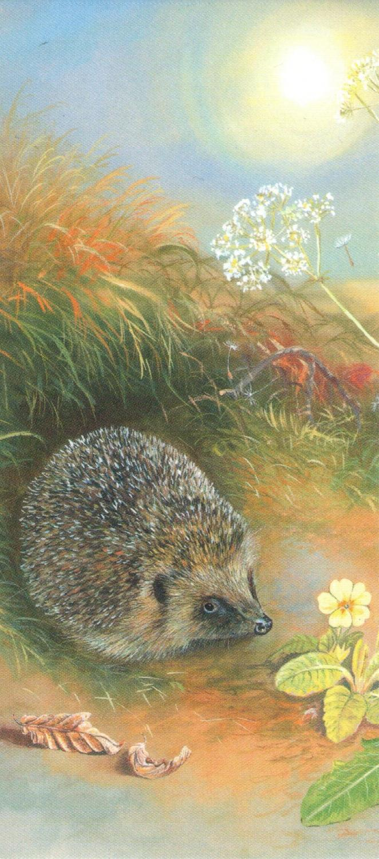 Magnetic Bookmark - Hedgehog & Dandelions
