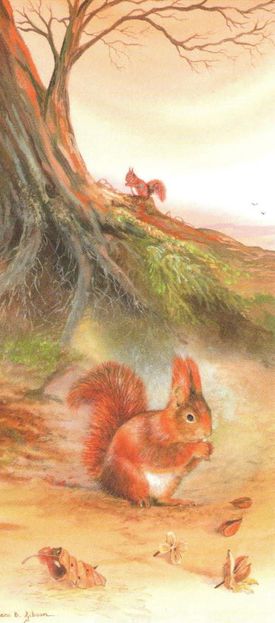 Magnetic Bookmark - Red Squirrel
