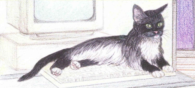 Magnetic Letter Opener - Black & White Cat