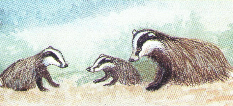 Mangetic Letter Opener - Badger