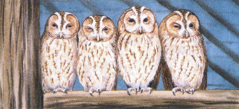 Magnetic Letter Opener - Rescue Owls