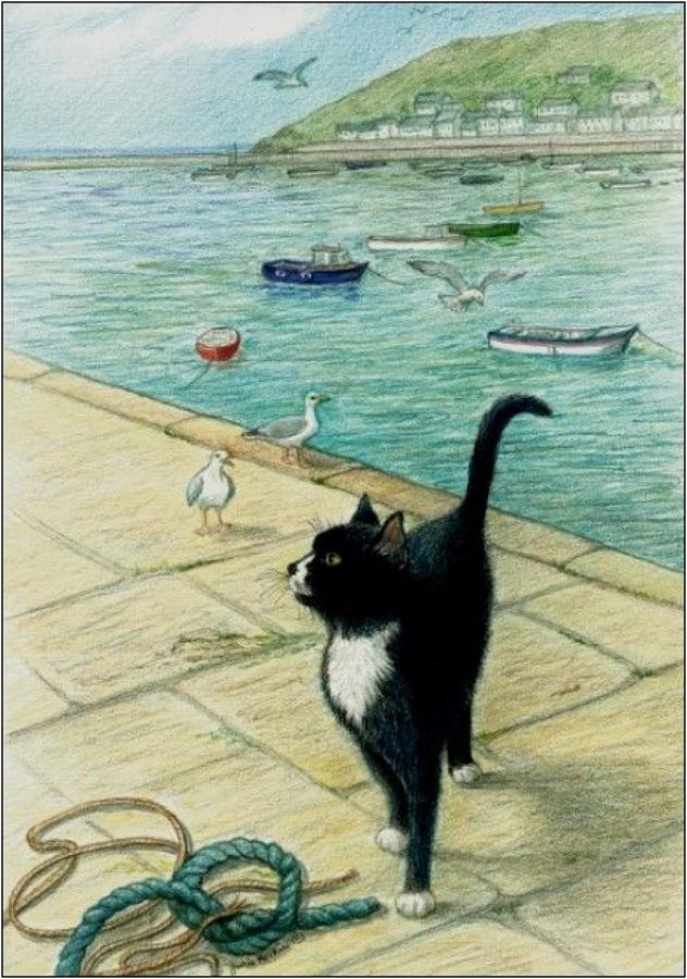 Pen - Cat on the Quay