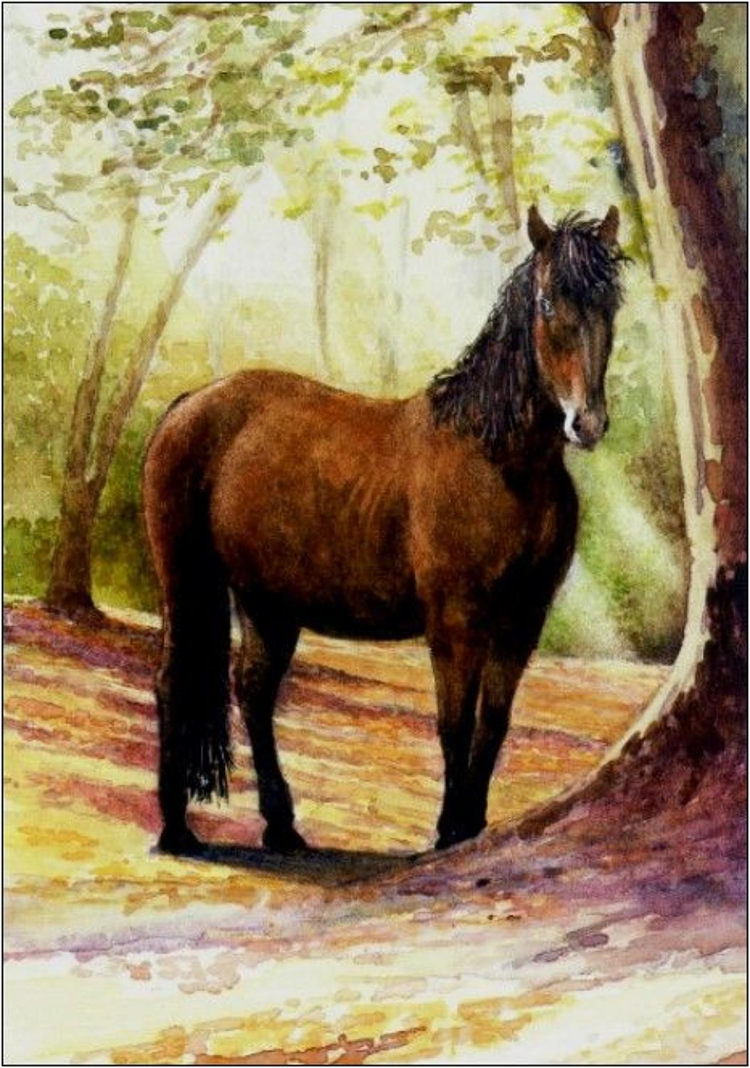 Pen - New Forest Pony