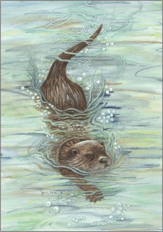 Pen - Otter