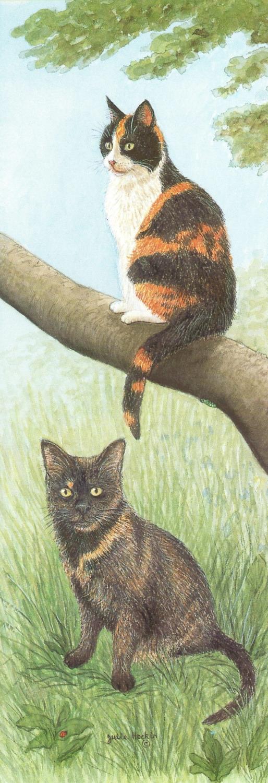 Tall Pad - Tortoiseshell Cat