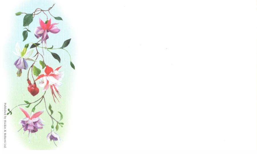 Correspondence Card - Fuchsia